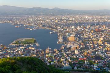 函館山山頂より函館港を望む_街並み