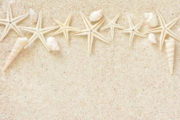 ヒトデ 貝殻 サンゴ砂