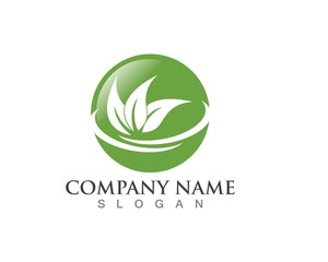 leaves green nature logo and symbol