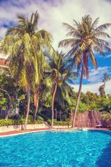 high, beautiful palm trees rostut poolside, around a luxury hotel. tropics asia
