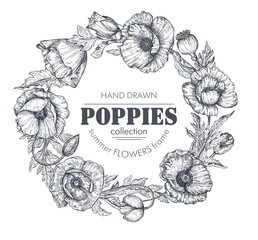 Vector floral frame with bouquets of hand drawn poppy flowers