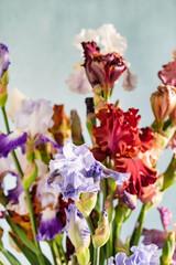 Bunch of coloful fresh irises