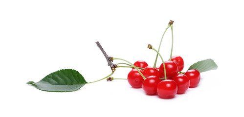 Fresh cherries isolated on white background