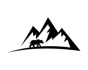 bear wildlife mountain