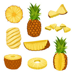 Flat vector set of whole, halves and chopped pineapples. Fresh and juicy tropical fruit. Elements for packaging design or poster