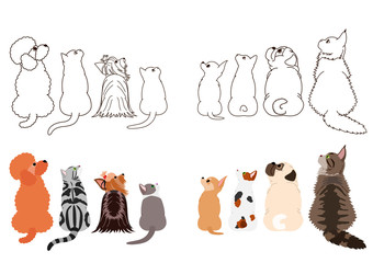 cats and small dogs looking up sideways in two rows