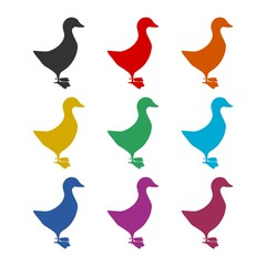 The silhouette of a goose or duck icon, color icons set