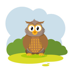 cute owl wild animal in the landscape