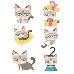 Funny vector set of grumpy cat.