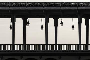 Wall Mural - Bir Hakeim bridge in Paris France, black and white photography