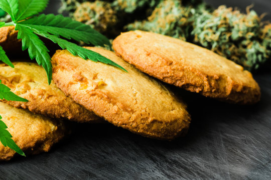 A can of cannabis buds Treatment, Concept of cooking with cannabis herb. Cookies with cannabis and