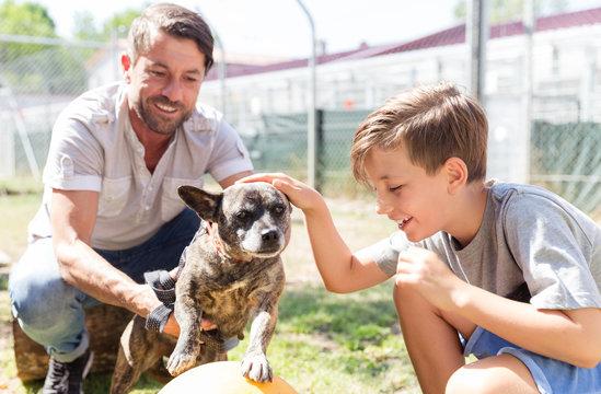 Vater und Sohn kümmern sich um verlassenen Hund im Tierheim