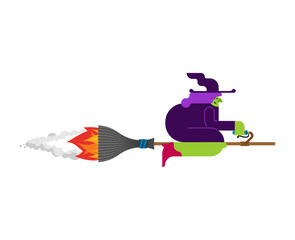 Witch on broom is flying isolated. Halloween Vector illustration.