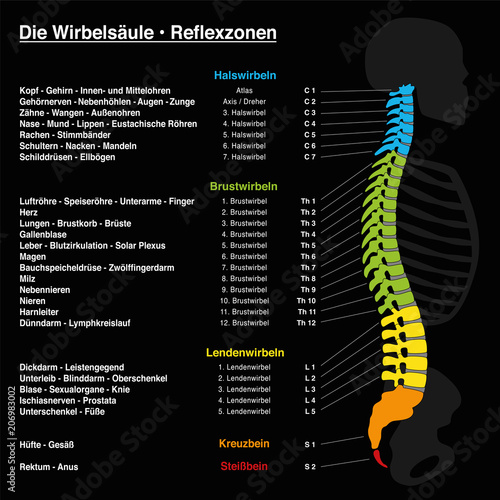 Spine reflexology with description of the corresponding internal ...