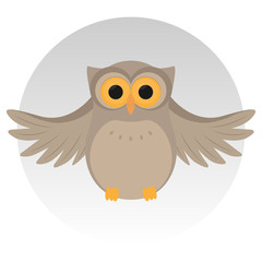Nice owl, sit, grey background