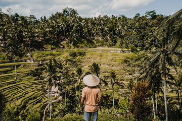 Search Photos Tegalalang