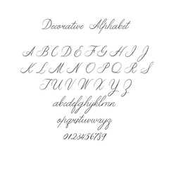 Vector Calligraphy Alphabet. Exclusive Letters. Decorative handwritten brush font for: Wedding Monogram, Logo, Invitation.