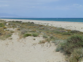 Punta Entinas Sabinar, paraje natural de costa y reserva natural situado en El Ejido y Roquetas de Mar, en la provincia de Almería (Andalucia, España)