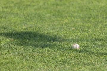Baseball ball in the grass.