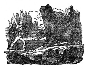 Fight with the polar bear (Ursus maritimus) (from Das Heller-Magazin, March 22, 1834)