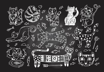 Beautiful hand drawn vector illustration cute cats.