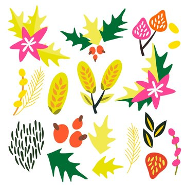 A set of graphic vector floral elements.