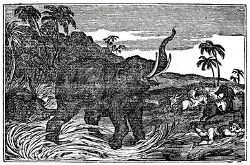 Elephant attacks (from Das Heller-Magazin, March 8, 1834)