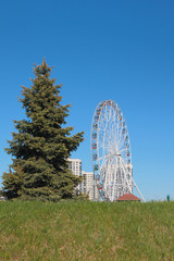 Fir-tree and big wheel in city. Kazan, Russia