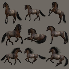 Hancock Roan Horse, 3d CG