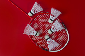 Badminton shuttlecocks and racket against a red background