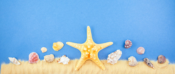 sand shells and starfish on a blue background. Coast Copy space for text Banner concept Flat lay