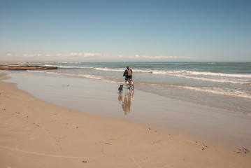 Man on bicycle has fun with his dog on the beach