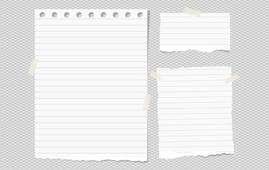 White lined torn note, notebook paper pieces for text stuck on gray squared background. Vector illustration.