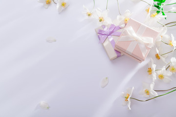 Gift boxes with white flowers on white background. Copy space