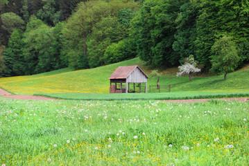 Old wooden rural barn in Slovenia