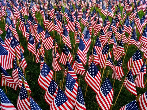 Beautiful Display of Hundreds of American Flags, Close Up, on a Green Field; Perfect for Patriotism, USA Holidays, Elections, Vietnam, Veterans, Military Service, and American Symbolism