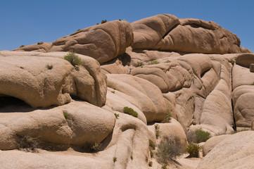 Jumbo Rocks