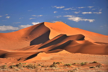 Acrylic Prints Desert Namibia. Red dunes in the Namib Desert