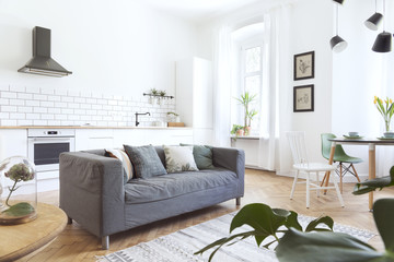 Modern and design scanidnavian open space with kitchen and living room. Sunny and bright  space whit white brick walls , a lot of plants and sofa.
