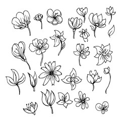 Hand drawn Sketch doodle vector line Flower icon element set eps10