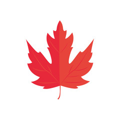 Vector Illustration. Red Maple leaf. Autumn icon leaf
