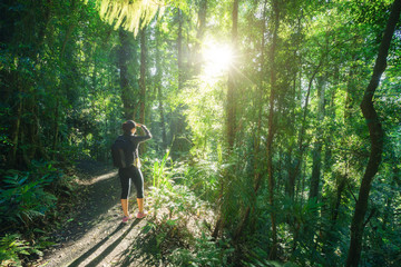 Deurstickers Oceanië Woman hiking in Rainforest of Dorrigo National Park, New South Wales, Australia