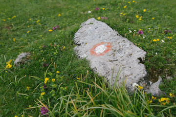 Close up of the Round Trail marker on a rock inMountains, European Alps