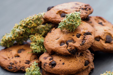 On a black background CBD use Cookies with cannabis and buds of marijuana on the table.