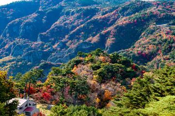 紅葉で有名な小豆島の寒霞渓