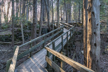 Crawford Lake Boardwalk