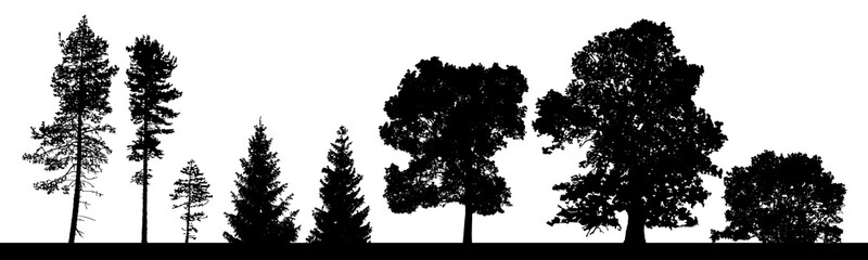 Vector silhouettes set of coniferous and deciduous trees ans bushes.