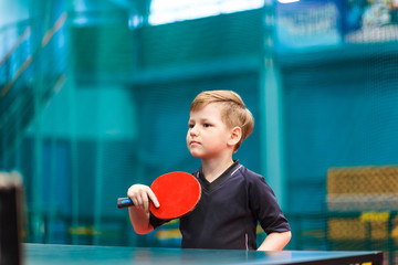 little child plays table tennis in the gym