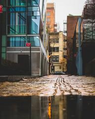 Wet Cobblestone Side Street