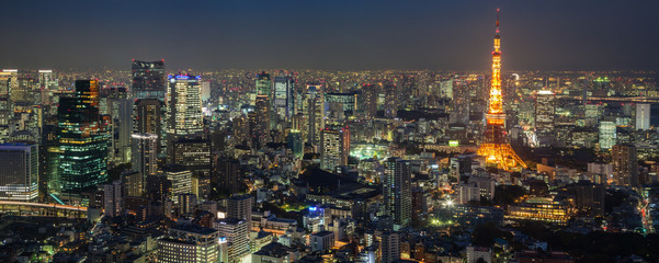 City skyline and Tokyo Tower viewed from Roppongi Hills, Tokyo, Japan